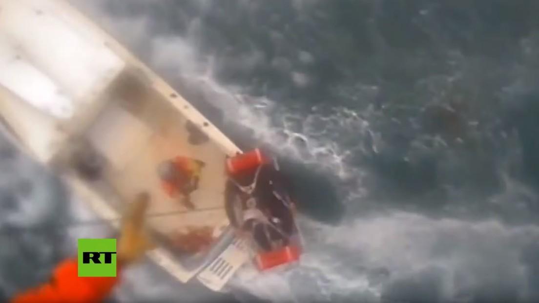 Un tiburón muerde la pierna a un surfista en la costa de California (VIDEO)