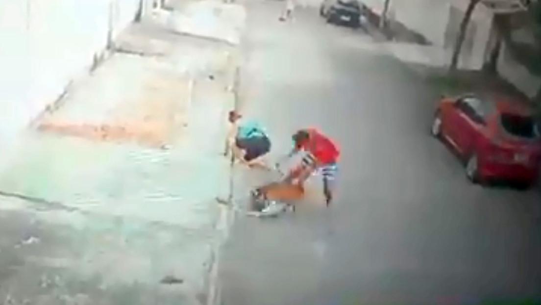 VIDEO: Un joven salva a un niño de 5 años del ataque de un pitbull