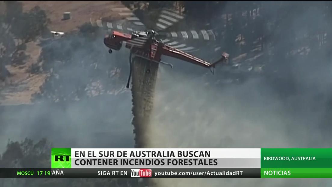 Buscan contener los grandes incendios forestales en el sur de Australia
