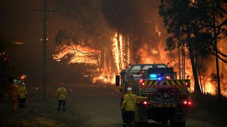 Devastadores incendios en Australia exterminaron el 20% del área natural de las Montañas Azules
