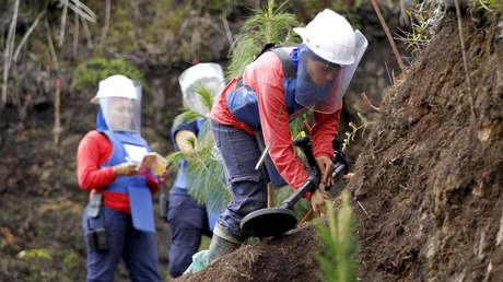 Muere un joven indígena colombiano al pisar una mina antipersona en Antioquia