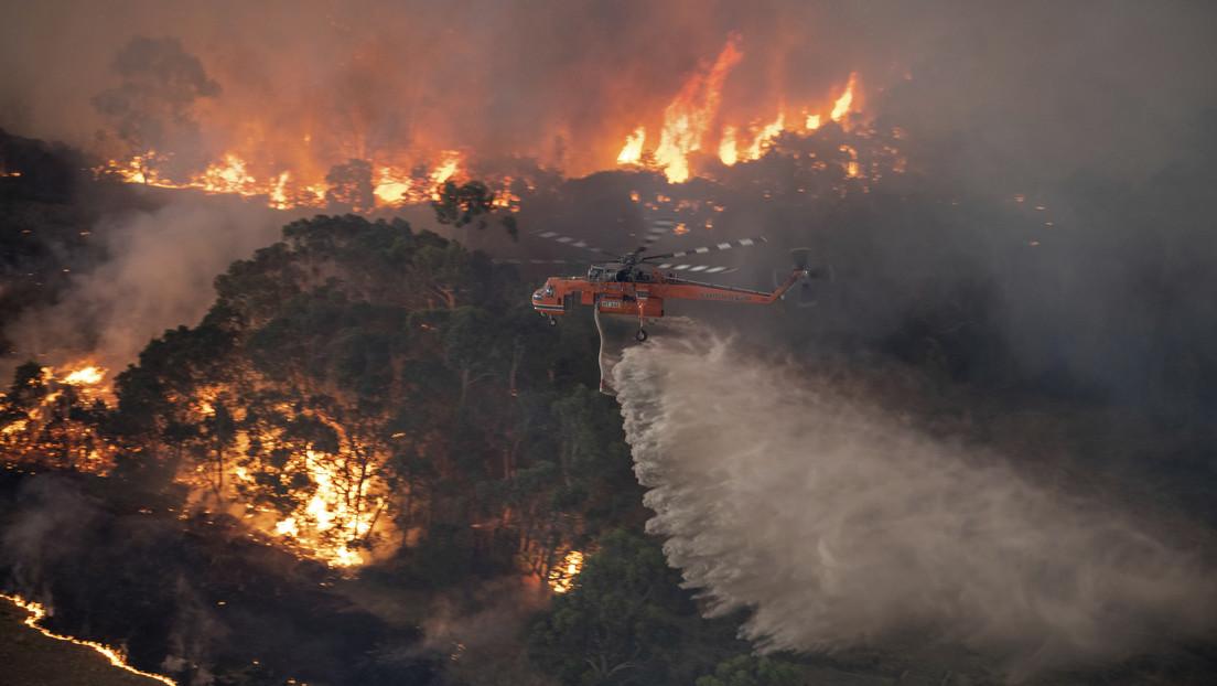 VIDEO, FOTOS: El humo por los incendios forestales en Australia es tan denso que ya llega a Nueva Zelanda
