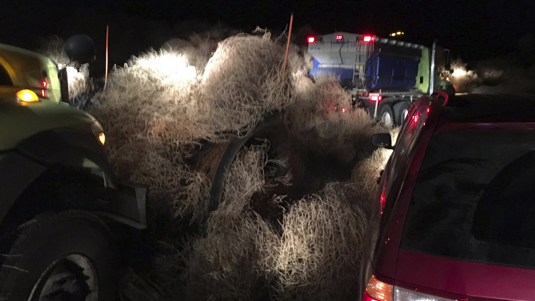 FOTO, VIDEO: Plantas rodadoras gigantes dejan atrapados a conductores en una carretera de EE.UU. en Nochevieja