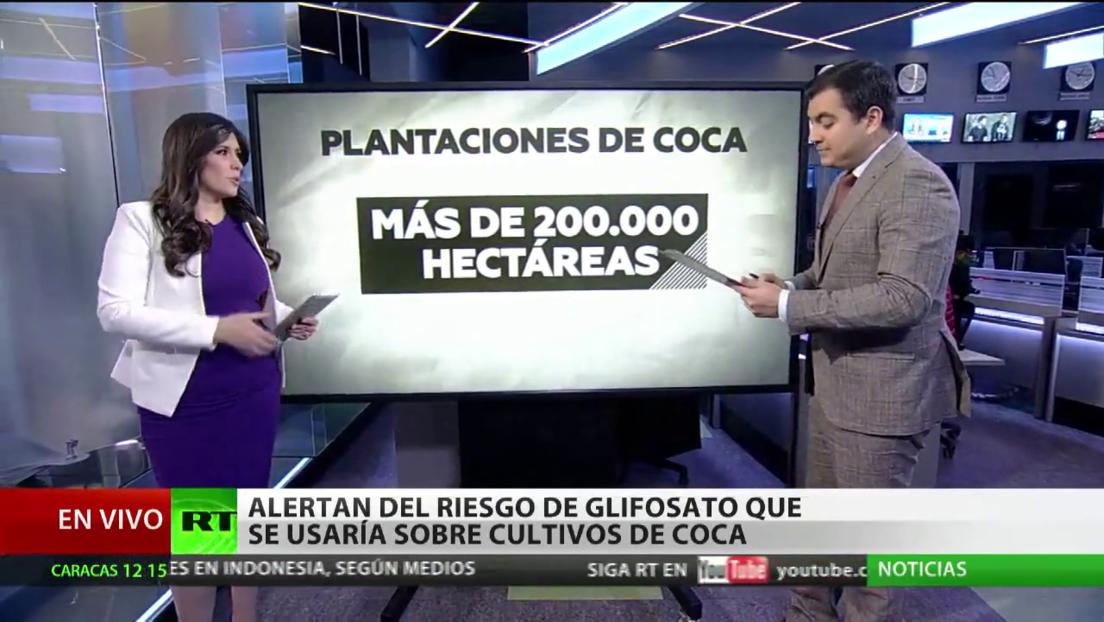 Ambientalistas alertan del riesgo que supondría el uso de glifosato sobre cultivos de coca en Colombia