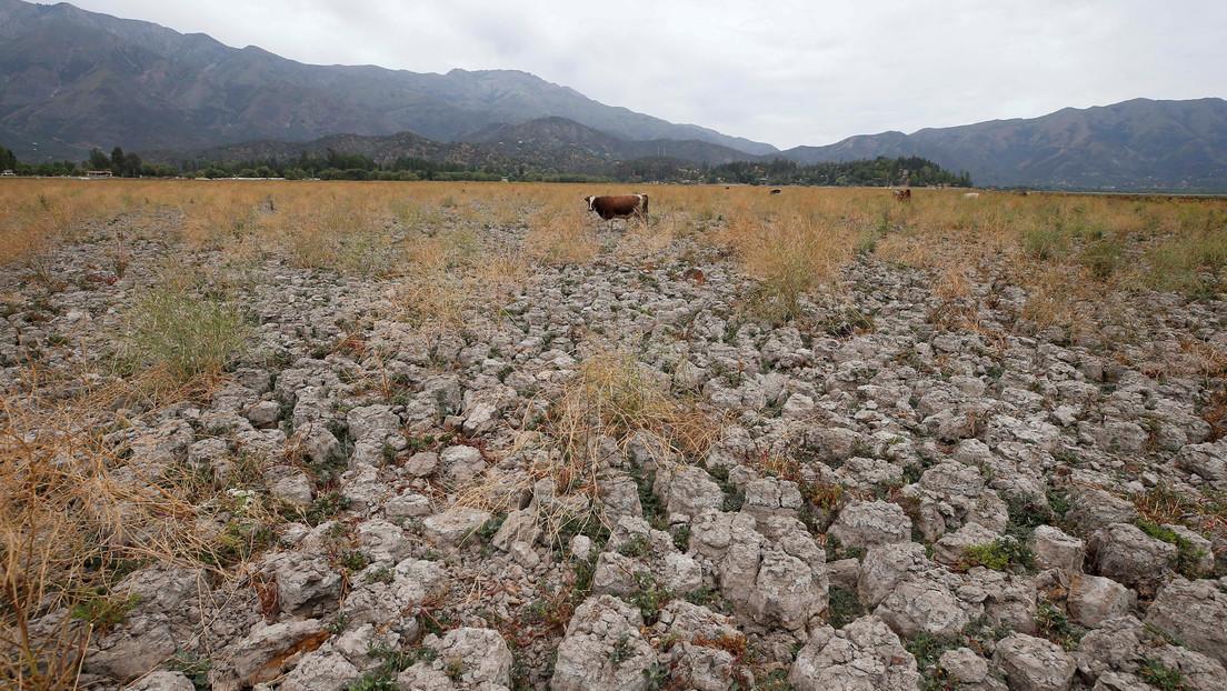 El Gobierno de Piñera lanza una campaña para el uso consciente del agua y el pueblo responde