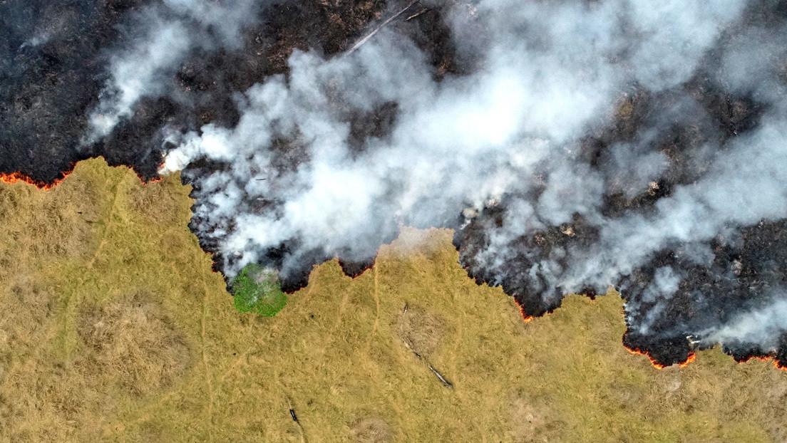 Los focos de incendios en la Amazonía aumentaron un 30 % en 2019
