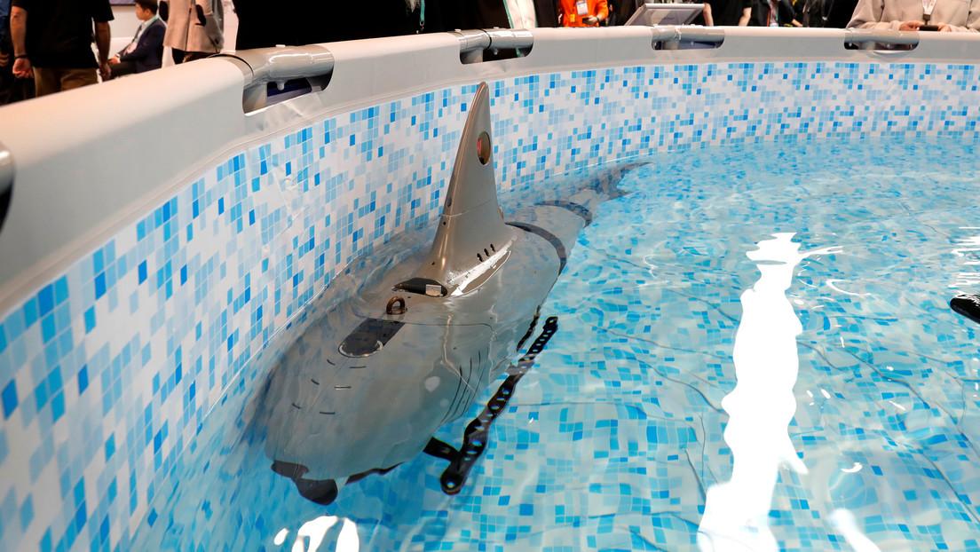 VIDEOS, FOTOS: Crean un tiburón robótico para fines militares pero lo que realmente interesa es que es precioso