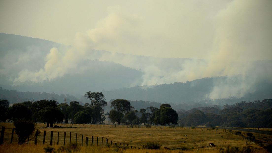 """El humo de los incendios de Australia hará un """"circuito completo"""" por todo el planeta"""