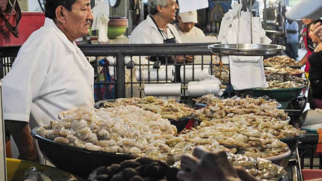 Rusia podría restringir la importación de gambas y plátanos de Ecuador por violaciones de las normas sanitarias
