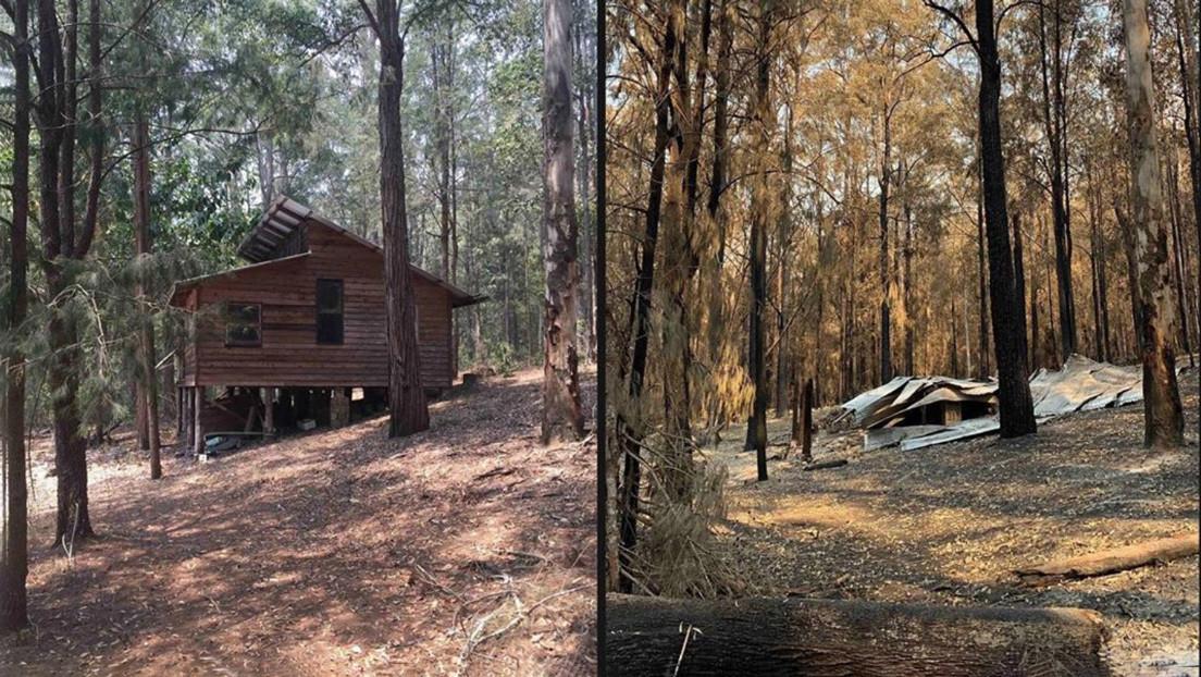 FOTOS: El actor Russell Crowe muestra cómo quedó su granja tras los incendios de Australia