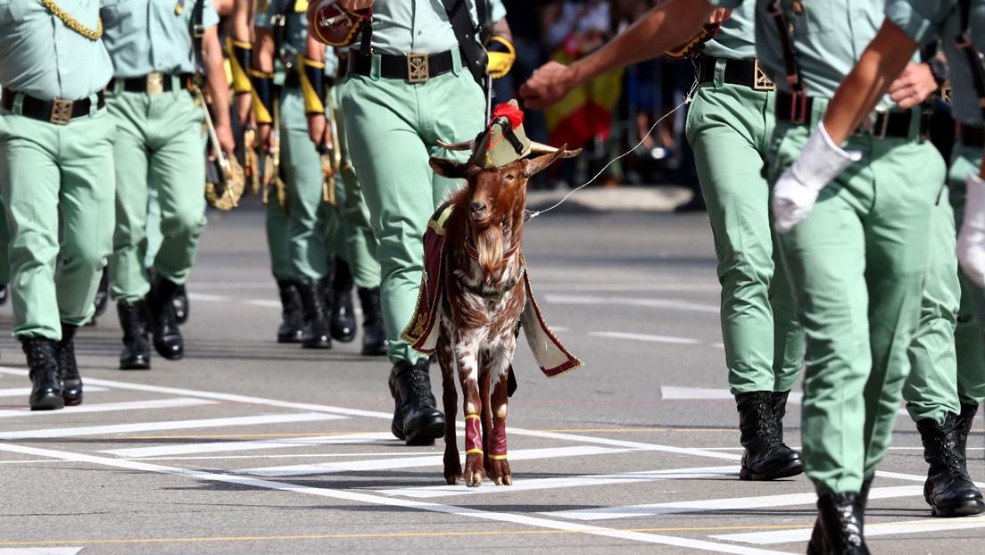 El neonazi legionario que ensambla a la extrema derecha en su jubilación dorada en España (y estuvo en las dictaduras de América Latina)