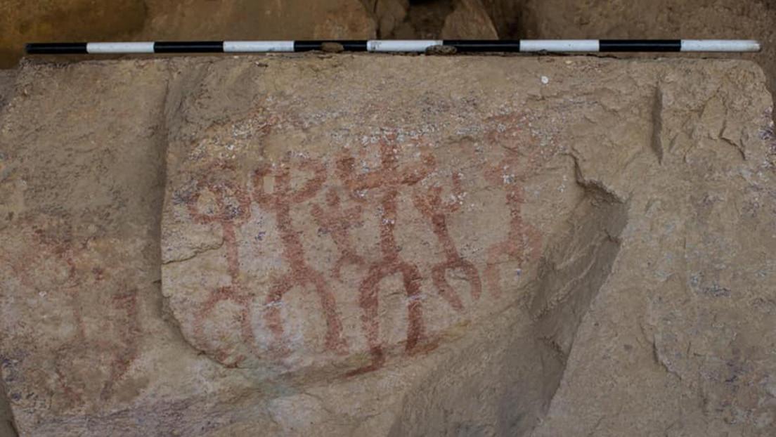"""""""Aventurero"""" descubre accidentalmente una antigua cueva con pinturas de personas y burros en Egipto (FOTOS)"""
