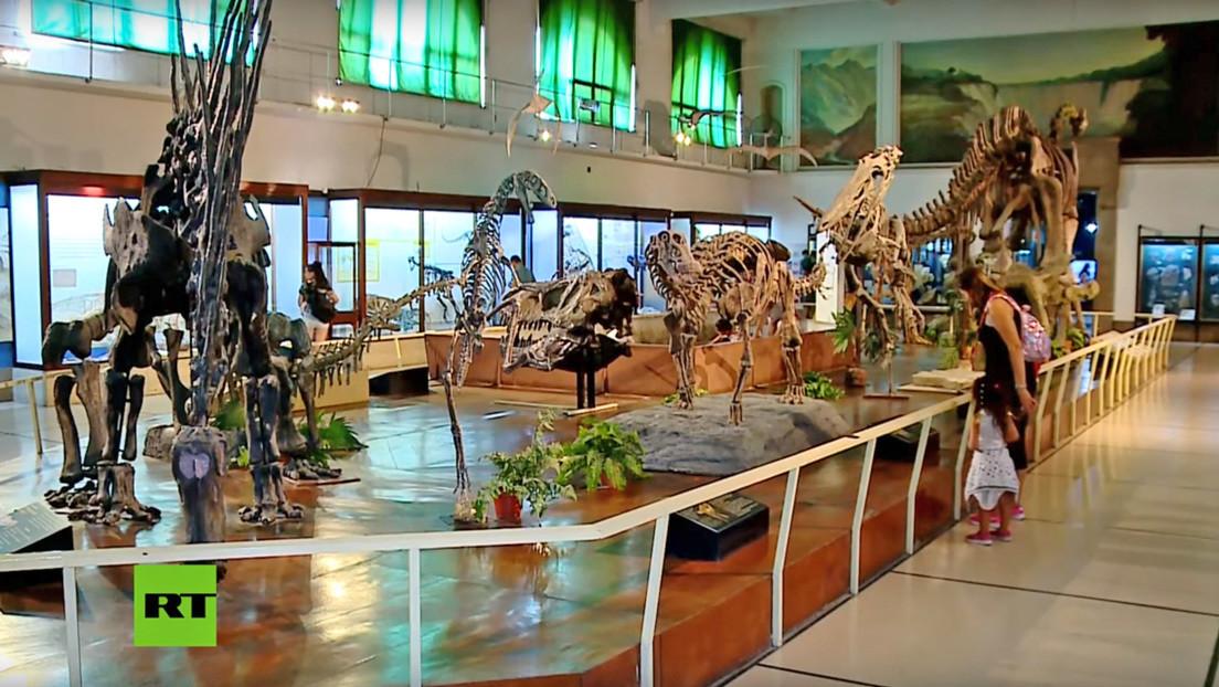 VIDEO: Descubren en Argentina los fósiles de los últimos dinosaurios que poblaron la Tierra