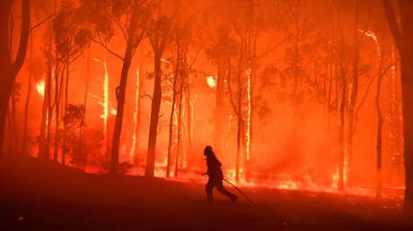 La última década tuvo las temperaturas más altas de la historia y el 2019 fue el segundo más caluroso en casi 150 años
