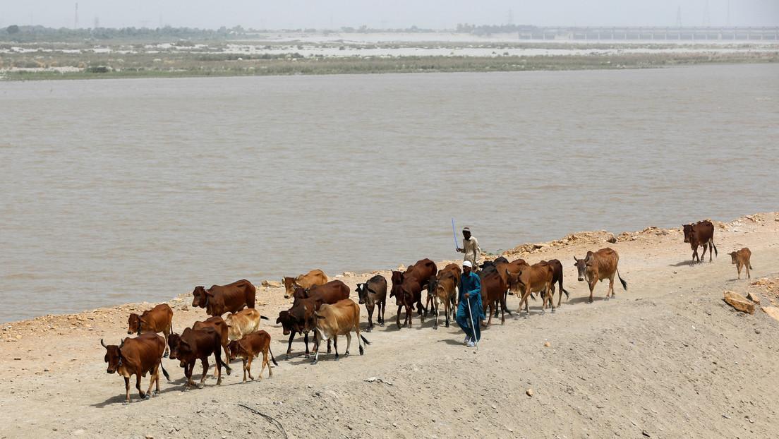 """""""Acuaterrorismo"""": La India acusa a Pakistán de malgastar el doble de agua de ríos compartidos que Nueva Delhi"""