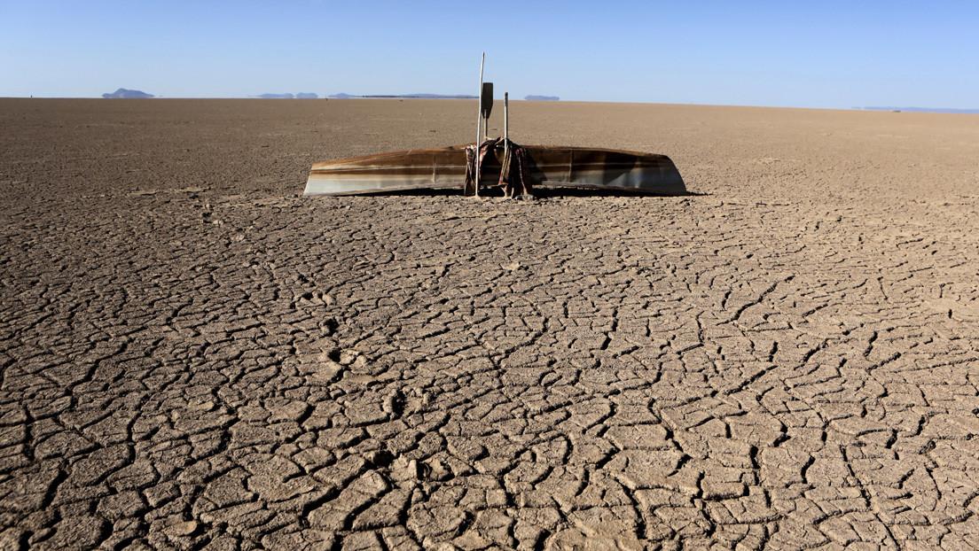 """La combinación de crisis ambientales podría provocar un """"colapso sistémico global"""""""