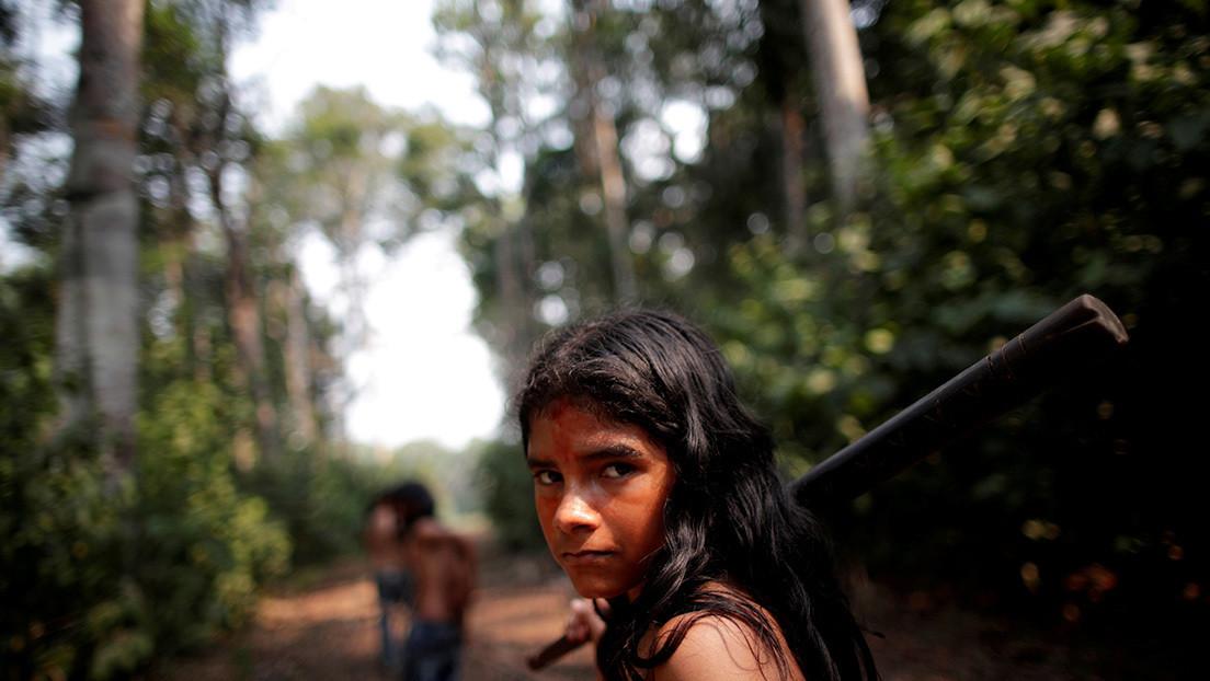 La deforestación en la Amazonía brasileña en enero pasado alcanzó el nivel más alto en cuatro años