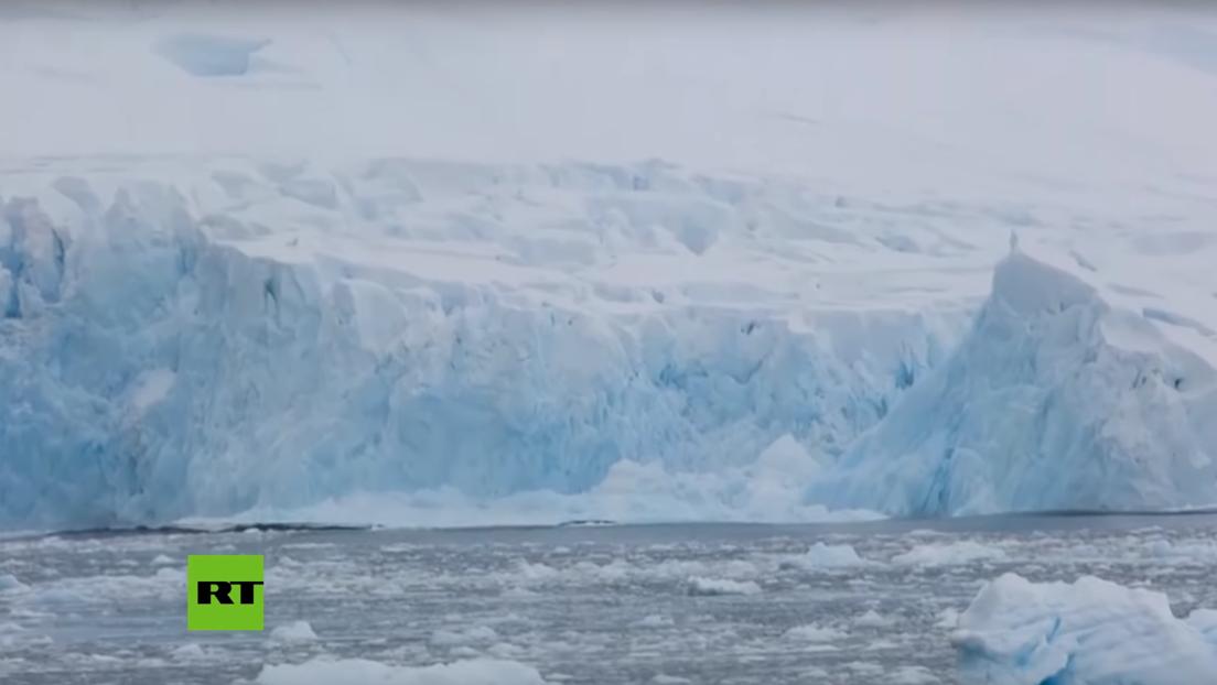 VIDEO: Captan en la Antártida el derrumbe parcial de un glaciar del tamaño de un bloque de viviendas