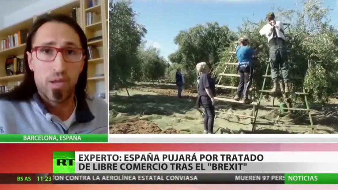 """Experto: """"España pujará por un tratado de libre comercio con Reino Unido tras el Brexit"""""""