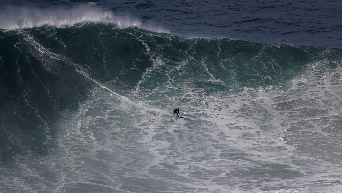Un surfista aguarda por su ola al lado de un tiburón martillo y ni se da cuenta (VIDEO)