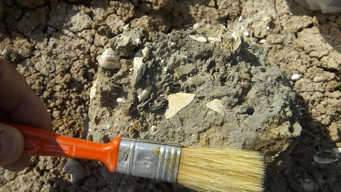 Descubren en Argentina una playa marítima de 5.000 años de antigüedad que estaba oculta por sedimentos