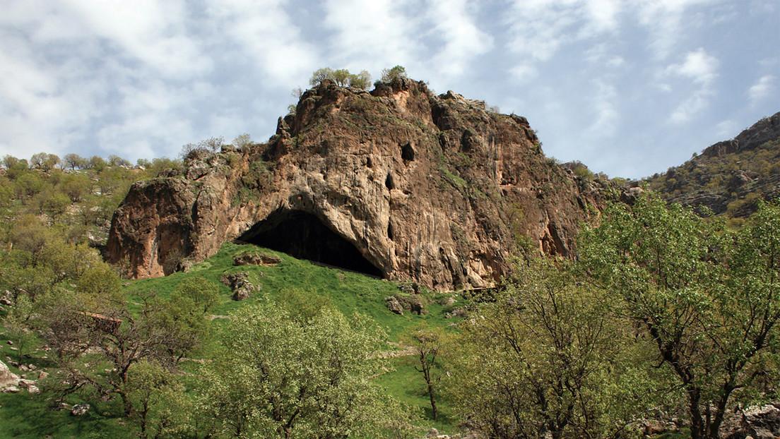 El descubrimiento de un esqueleto de neandertal en una cueva de Irak sugiere el uso de flores en sus ritos funerarios