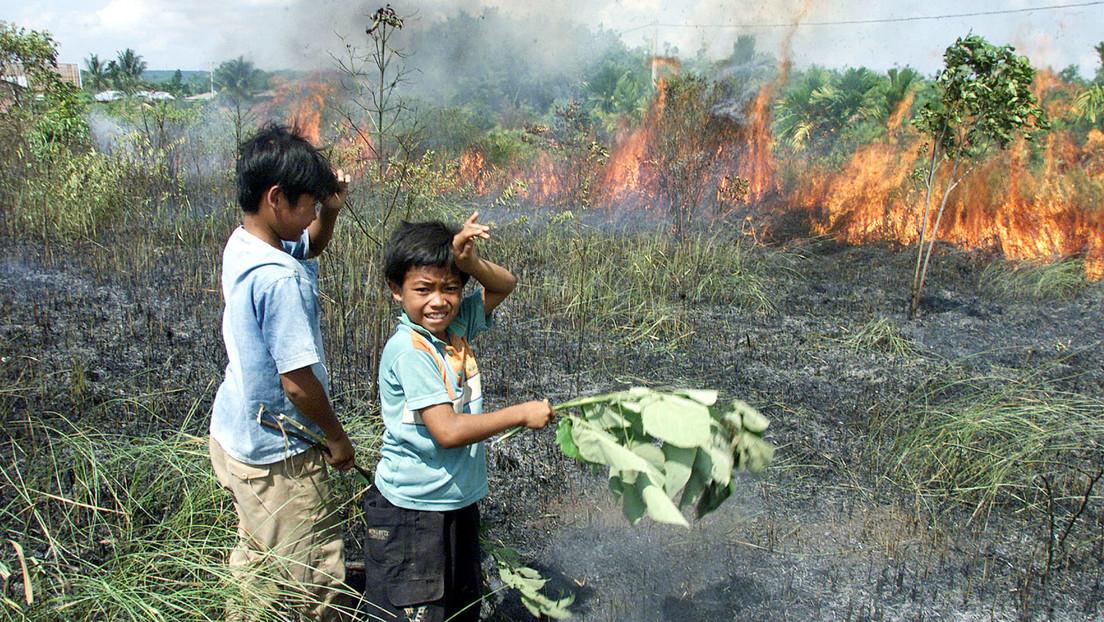 """La ONU y la OMS alertan del peligro """"inmediato"""" que el cambio climático y la mala alimentación suponen para todos los niños"""