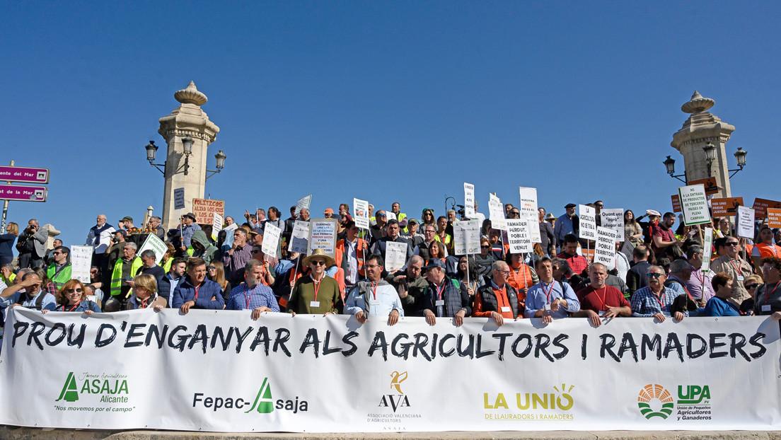 El sector estratégico del campo español en pie de lucha: ¿qué piden los agricultores y ganaderos?