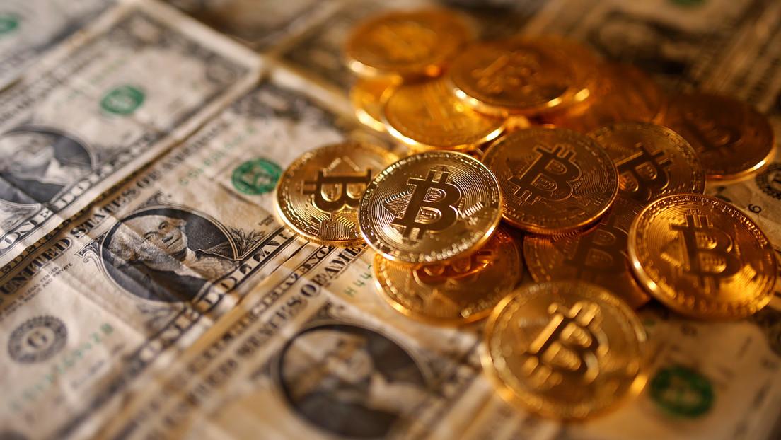 Un narcotraficante pierde 58 millones de dólares en bitcoines porque su casero tiró las contraseñas a un vertedero sin darse cuenta