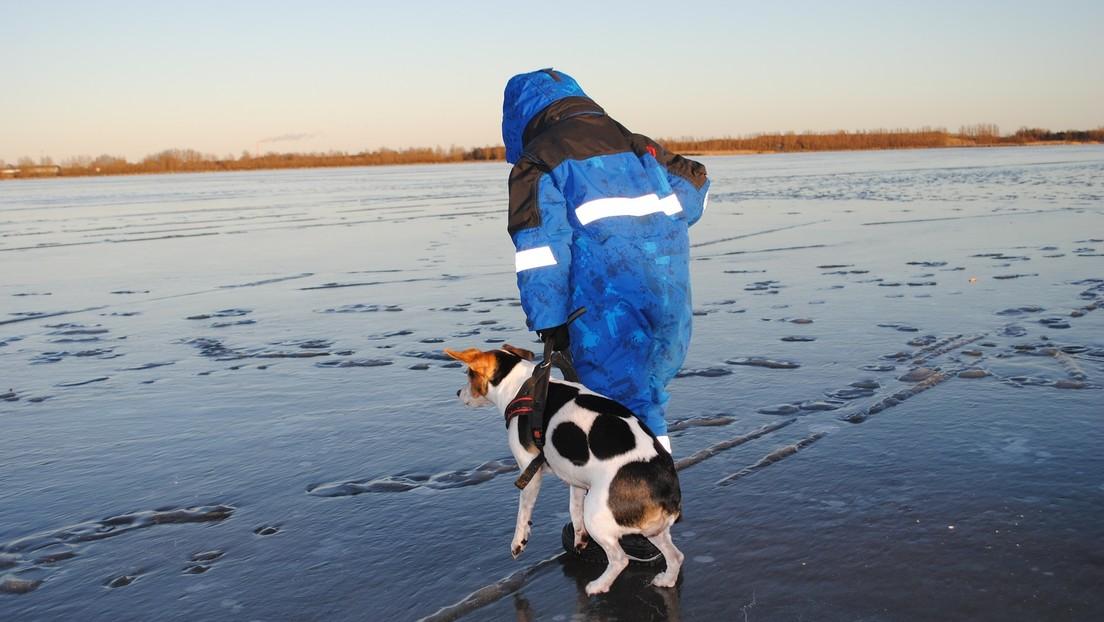 VIDEO: Una madre salta a un estanque helado para rescatar a su perro en Rusia