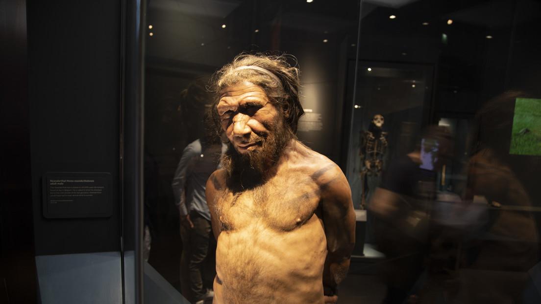 Descubren rastros de una población desconocida en el ADN de los neandertales y los denisovanos