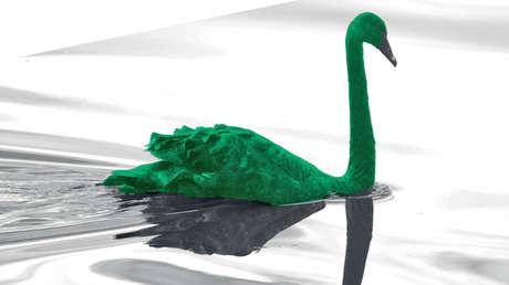 ¿Nos espera un 'cisne verde? El Banco de Pagos Internacionales advierte sobre las posibles causas de la futura crisis global