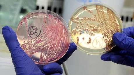 Inteligencia Artificial descubre el que podría ser el antibiótico más potente, capaz de combatir infecciones en cuestión de horas