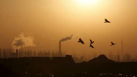 """Fotos desde el espacio muestran """"una caída dramática"""" de contaminación en China en medio de la cuarentena"""