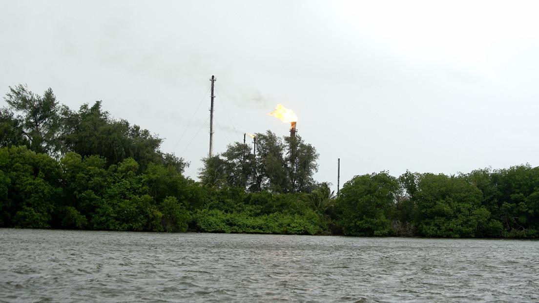 Denuncian que la petrolera estatal mexicana destruye un bosque de manglares en Tabasco