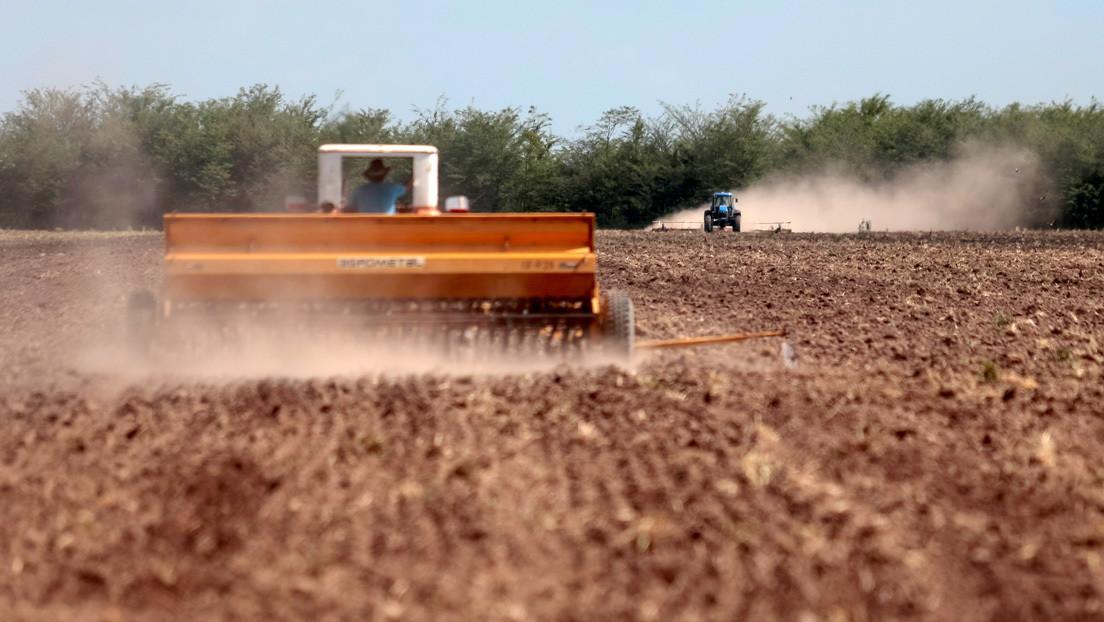 """""""Reacción desmesurada"""": la 'huelga' de terratenientes contra Alberto Fernández y el polémico pasado de la Sociedad Rural Argentina"""