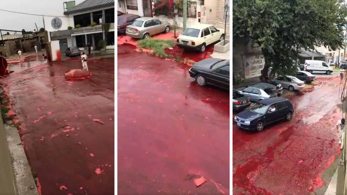 VIDEO: Un barrio argentino es inundado de unos 500.000 litros de sangre animal tras reventarse un tanque de un matadero