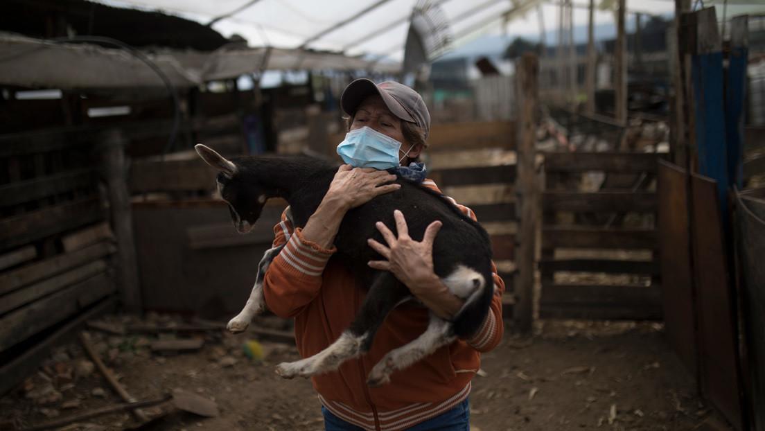 La ONU prevé una posible crisis alimentaria por el coronavirus