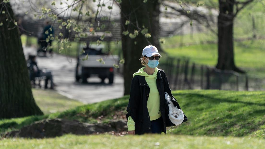 Nueva York podría enterrar en parques urbanos a los muertos por coronavirus