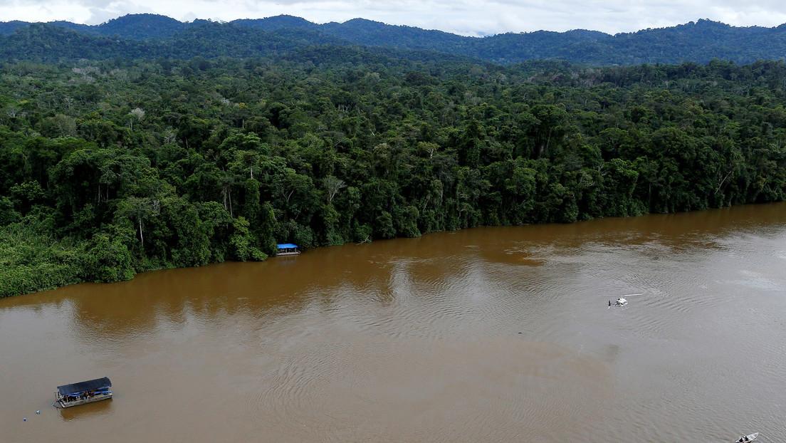"""En la Amazonia se crearon """"islas de bosque artificial"""" hace más de 10.000 años"""