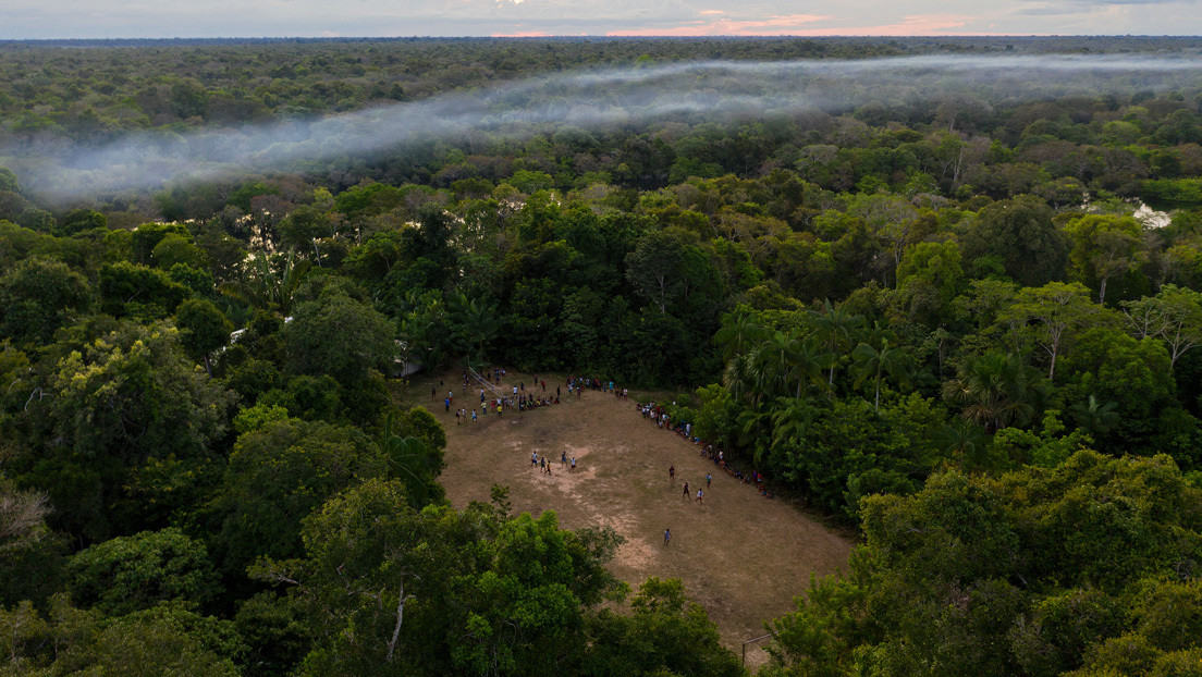 Cómo los invasores ilegales aprovechan la cuarentena en una Amazonia brasileña blindada por el coronavirus