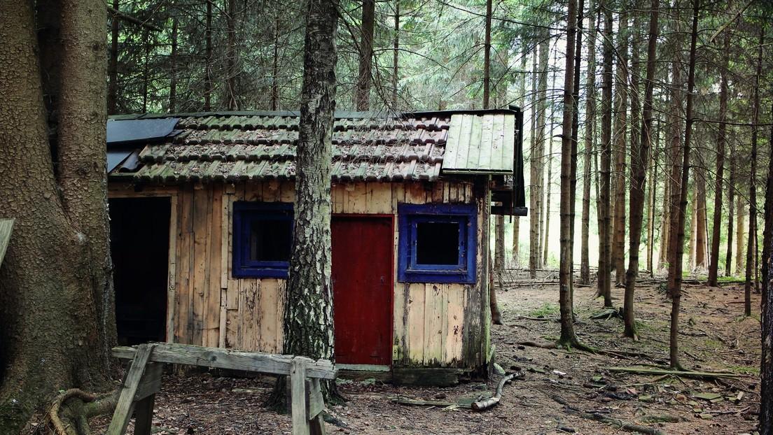 Una pareja británica vive en el bosque tras quedarse sin casa por la pandemia