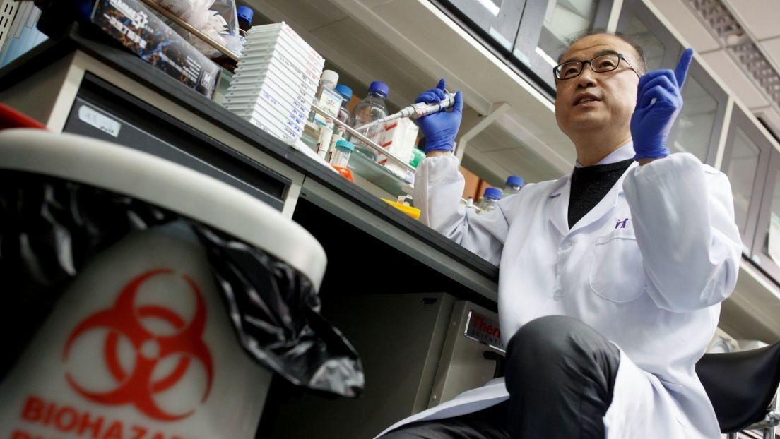 Científicos de EE.UU. y China se alían para buscar el origen del coronavirus