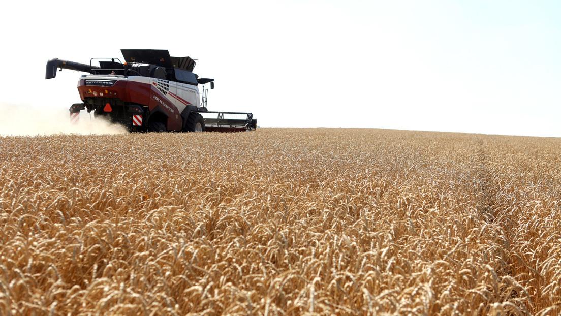 Rusia suspende la exportación de cereales