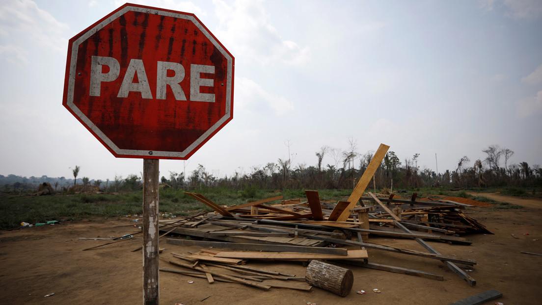 Ni siquiera durante la cuarentena: los guardianes de la Amazonia son asesinados mientras Bolsonaro desmantela los controles ambientales