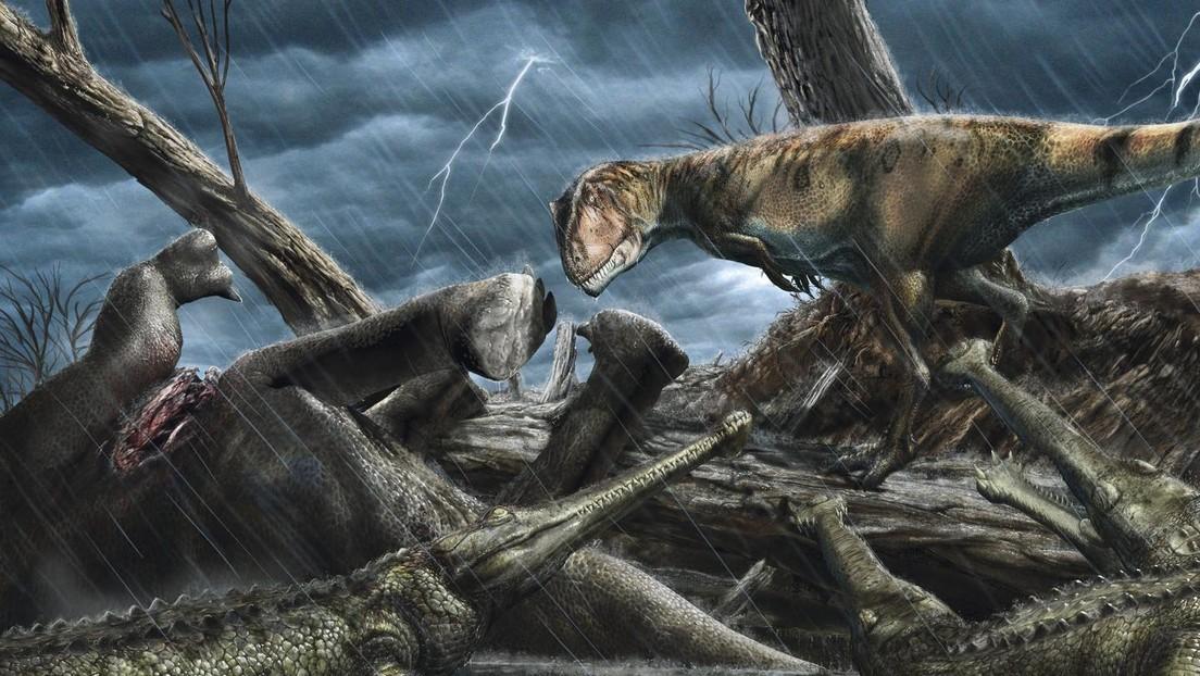 """""""El lugar más peligroso en la historia de la Tierra"""": Científicos revelan el área donde vivían los mayores depredadores"""