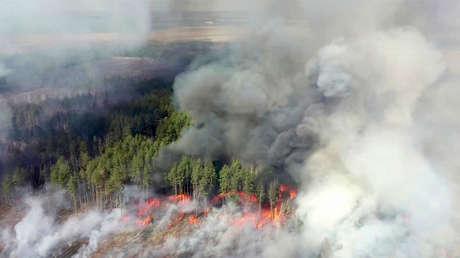 Incendios en la zona de Chernóbil se acercan a los depósitos de residuos radiactivos (VIDEOS)