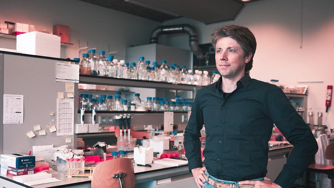 """Hallan anticuerpos """"completamente humanos"""" capaces de bloquear la infección del nuevo coronavirus"""