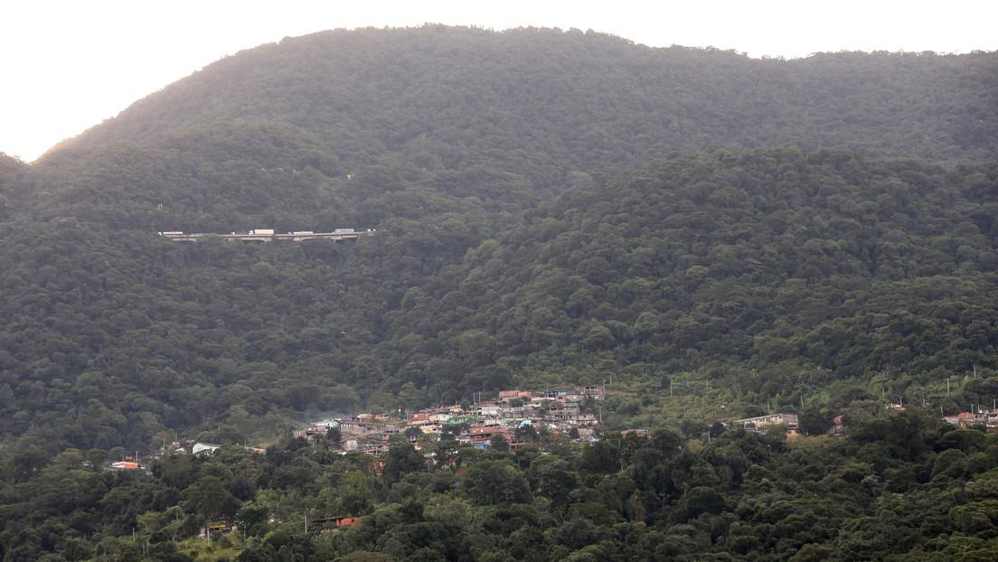 Bolsonaro amnistía a los taladores ilegales de la Mata Atlántica (o cómo la pandemia no frena los crímenes ambientales en Brasil)