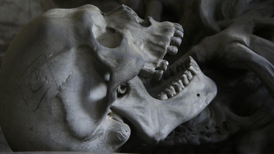 Hallan en Mongolia los esqueletos de dos guerreras que pudieron haber inspirado la leyenda de Mulan